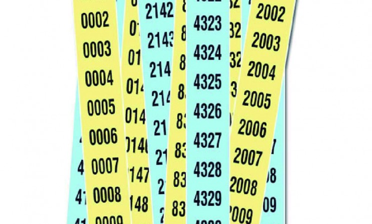 Números premiats sorteig Fira de la Castanya'19