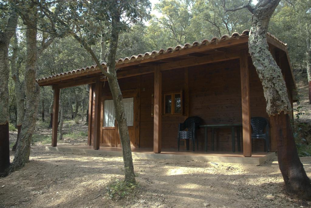 http://salinesbassegoda.org/wp-content/uploads/2017/07/Camping-Ma%C3%A7anet-4.-Ma%C3%A7anet-Large-1.jpg